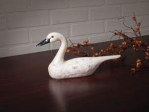 HD70832 White Swan