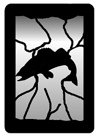 WA0343 Walleye Small Accent Mirror